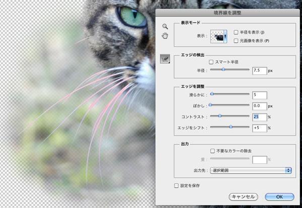 img_soft_pscs5_22_38.jpg