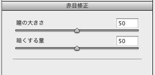 img_soft_pscs5_24_28.jpg