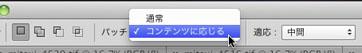 img_soft_pscs6_01_16.jpg