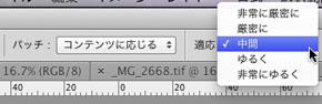 img_soft_pscs6_01_17.jpg
