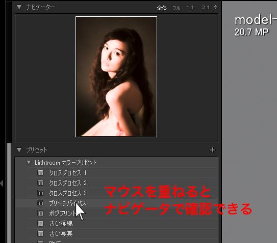 img_soft_pslr05_19.jpg