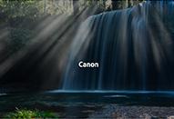 Adobe Stock|キヤノンと協業し日本の風景や自然を捉えた高品質な写真素材を提供