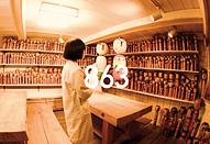 中島信也監督、黒田秀樹監督など広告のプロが指導してくれる映像合宿「my Japan Creative Summer Camp2018」