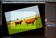 Adobe Session「最新版 Adobe Photoshop CS6 の秘法~ティップス & テクニックの紹介~」