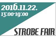 各社の最新ストロボが集結する「ストロボフェア2016」が11月22日に開催