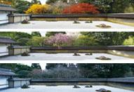 4Kケーススタディ② 特別展「京都−洛中洛外図と障壁画の美」 龍安寺石庭4K映像