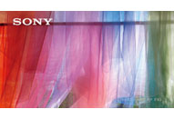 4Kケーススタディ③ ソニーマーケティング BRAVIA 4K 「美へのこだわり」篇
