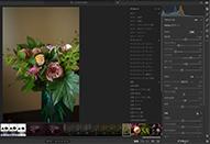 Lightroom CC プロファイルから始める画像調整
