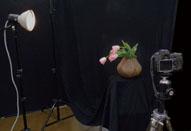 第4回 円柱、円錐、球のライティングパターン