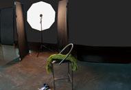 第25回 ライトパネル+アンブレラで撮影