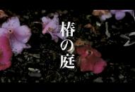 上田義彦 初映画監督作品「椿の庭」を語る